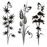 A set of 3 floral design elements. — Stock Vector #22533825
