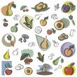 A set of vector icons of fruits and vegetables in color, and black and white renderings. - Stock Vector