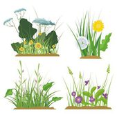 A set of floral and grass design elements, vector illustration series. — Stock Vector