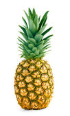 Fresh whole pineapple — Stockfoto