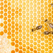 Working bees — Stock Photo #28325967