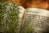 Bible open to Christmas passage — Stock Photo
