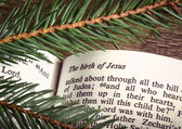 Bible open to Christmas passage — Stockfoto
