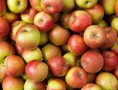 яблоки — Стоковое фото