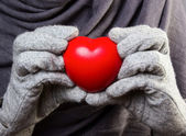 Heart in hands — Foto Stock