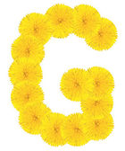 Letter G made from dandelions — Foto Stock
