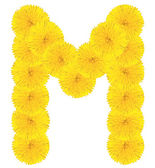 Letter M made from dandelions — Photo