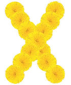 Letter X made from dandelions — Foto Stock