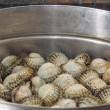 Quebec cockles — Stock Photo #21268401