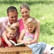 Family reading a book in a park — Video