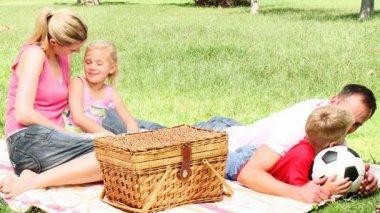 Padres e hijos en un parque después de tener un picnic — Vídeo de Stock