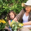 Stock Video: Grandmother and her granddaughter gardening