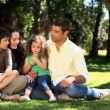 Cute family enjoying time together sitting on the grass — Stock Video