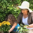 Stock Video: Old womand her granddaughter gardening together