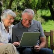 Elderly couple looking at a laptop sitting on a bench — Vídeo de stock
