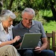 Elderly man and woman looking at a laptop sitting on a bench — Stock Video