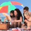 Cute family having a picnic on the beach — Stock Video