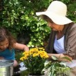 Stock Video: Old womand child gardening