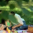 Parents feasting at a picnic with children on a tablecloth — Stock Video