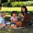 Parents enjoying a picnic with children on a tablecloth — Vidéo