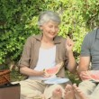 Seniors feasting at a picnic — Stock Video