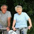 Elderly couple walking with their bikes — Stock Video