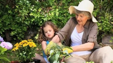 Grandmother and her granddaughter gardening — Stock Video