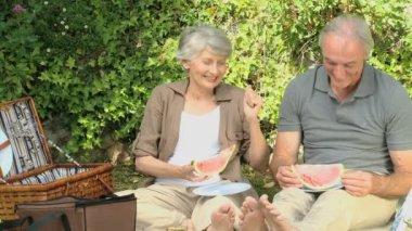 Seniors feasting at a picnic — Stock Video