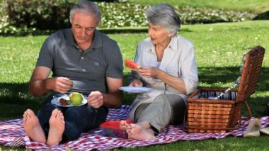 Senior couple feasting at a picnic — Stock Video