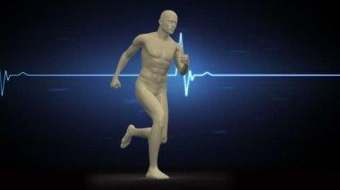 Digital body running on ECG background — Stock Video