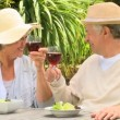 Mature couple enjoying red wine outdoors — Stock Video #23496237