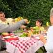 Stock Video: Family lunch in the garden