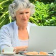 Woman working on her laptop in the garden — Stock Video #23496495