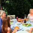 Parents having a conversation with grandmother during the meal — Stock Video #23496853