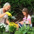 Little girl and mother potting flowers in garden — Stock Video #23497027