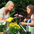 Mother and daughter smelling pink flowers in garden — Stock Video