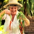 Mature woman picking up root vegetables in the garden — Stock Video #23497847