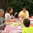 Family lunch with grandparents in the garden — Stock Video #23498129