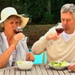 Mature couple enjoying lunch by the swimming pool — Stock Video #23498221