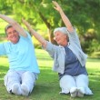 Stock Video: Mature couple doing their stretches outside