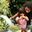 Young woman helping her little daughter to plant a flower — Stock Video #23499265