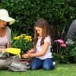 Stock Video: Family doing some gardening together