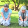 Stock Video: Mature couple doing their stretches