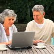 Stock Video: Mature couple working on laptop in garden