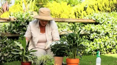 Mature woman tending to her plants — Stock Video