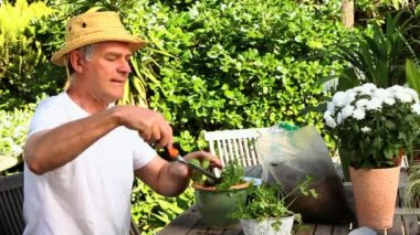 Man potting plants in the garden — Stock Video