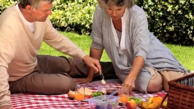 Mature couple picnicking in the garden — Stock Video