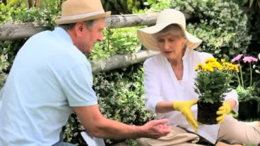 Mature couple gardening — Stock Video