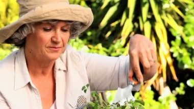 Happy mature woman potting plants — Stock Video