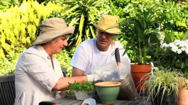Happy mature couple potting plants — Stock Video